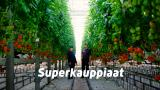 Superkauppiaat