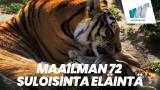 Maailman 72 suloisinta eläintä