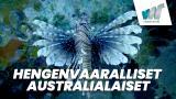 Hengenvaaralliset australialaiset