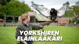 Yorkshiren eläinlääkäri