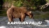 Karhujen paluu