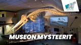 Museon mysteerit