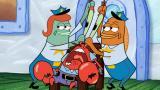 8 - Piiraskupru / Planktonin vakkari
