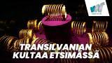 Transilvanian kultaa etsimässä