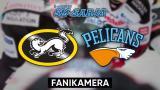 Kärpät - Pelicans, Fanikamera