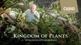 David Attenborough's Kingdom of Plants