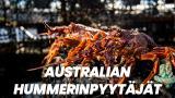 Australian hummerinpyytäjät
