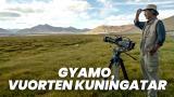 Gyamo, vuorten kuningatar