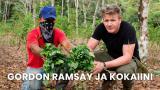 Gordon Ramsay ja kokaiini