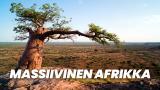 Massiivinen Afrikka